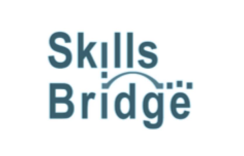 Skills Bridge